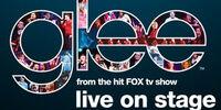 Glee Live 2011