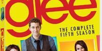 Glee: The Complete Fifth Season