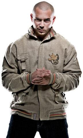 File:Pitbull-pitbull-rapper-25106324-445-738.jpeg