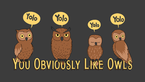 File:You obviously like owls.png