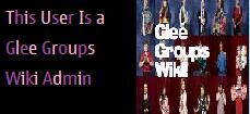 File:GleeGroupsWikiAdmin.png