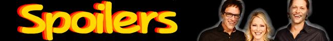 650px-SpoilersBanner