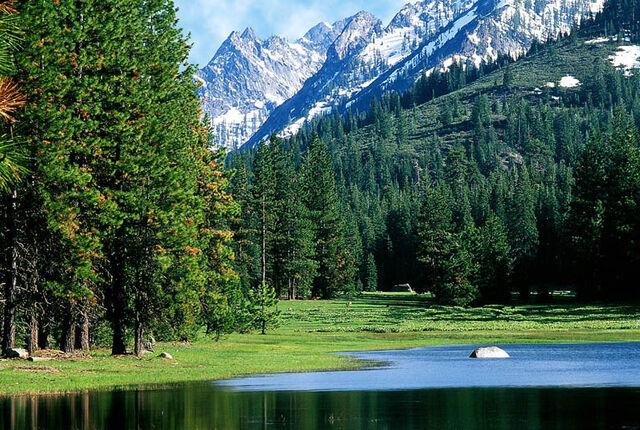File:Wilderness.jpg