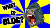 Who is blog