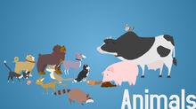 Buisness friendly animals