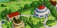Fasha's House