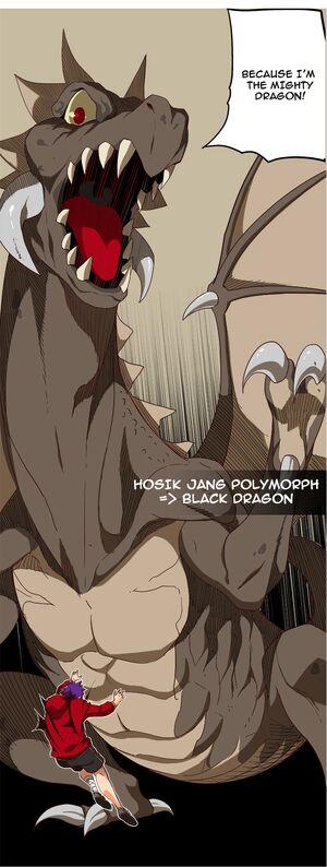 Jang Ho-Sik Dragon form
