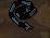 File:Rune whip.JPG