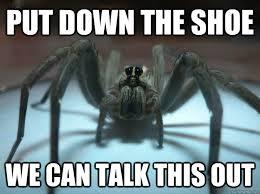 File:Spider-meme.png