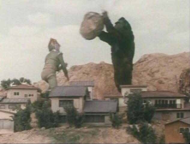 File:Gorilla Rock Throw.jpg
