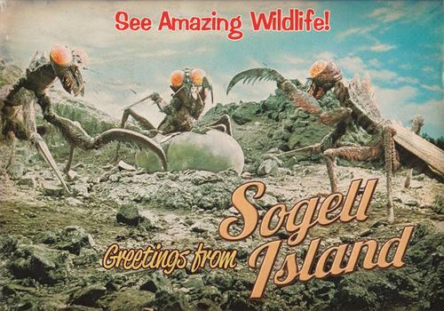 File:SOG - See amazing wildlife.jpg