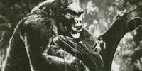 King Kong (RKO films)