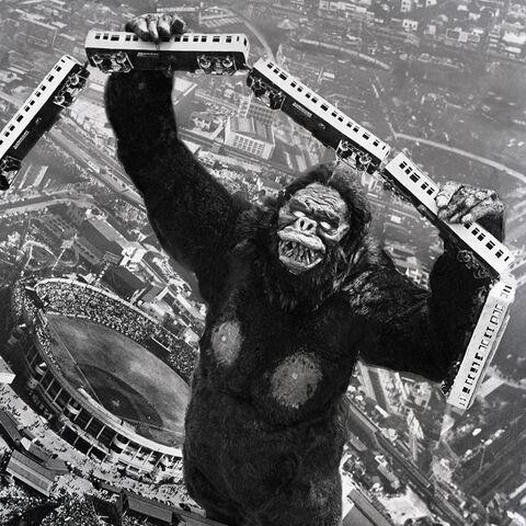 File:Godzilla.jp - 3 - ShodaiKong King Kong 1962.jpg