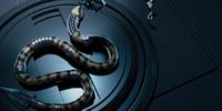 Giant Anaconda/Gallery