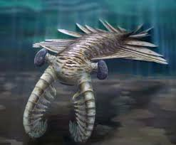 File:Anomalocaris.png