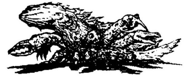 File:Barubaroi Concept Art 3.jpg