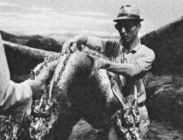 File:DAM - Fixing Up King Ghidorah.jpg