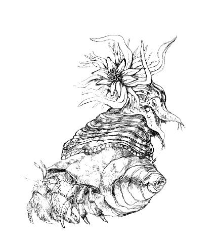File:Concept Art - Yamato Takeru - Kaishin Muba 1.png