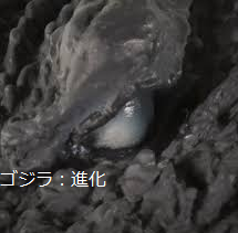 File:Shinka Gojira -2 (ゴジラ:進化).png