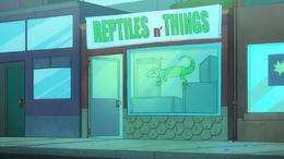 Reptiles 'n' Things