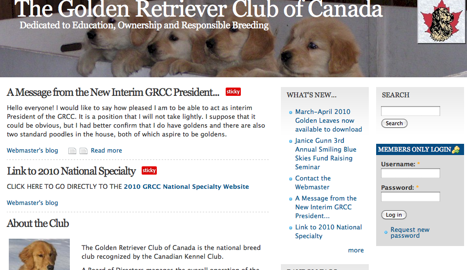 Golden Retriever Club Of Canada