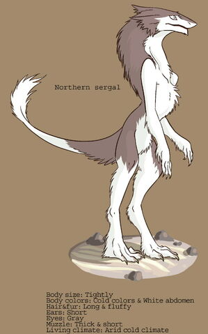 File:NorthernSergal.jpg