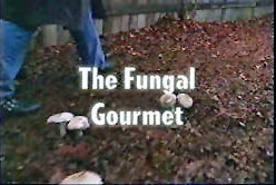 The Fungal Gourmet
