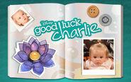 Good-luck-Charlie-good-luck-charlie-14109581-1280-800