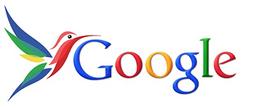 Google Hummingbird Logo