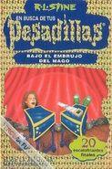 Under the Magician's Spell - Spanish Cover - Bajo el embrujo del mago