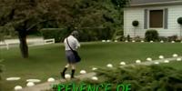Revenge of the Lawn Gnomes/TV Episode