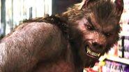 Index.werewolf