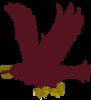 Sigil Raven Flying