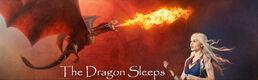 Dragon Sleeps Banner
