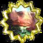 Badge-29-7