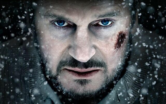 File:Blue snow eyes movies photography celebrity snowflakes actors liam neeson faces the grey 2560x160 www.wallpaperto.com 33.jpg