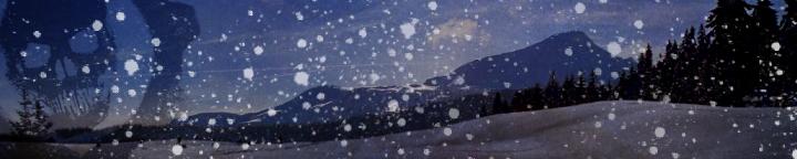 Snowscape banner
