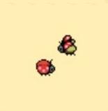 File:Ladybug.png