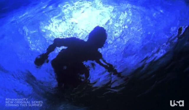 File:1x01-Surfer.jpg