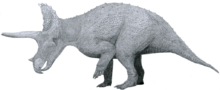 Triceratops by Tom Patker