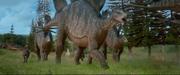 Stegosaurus and pachy running