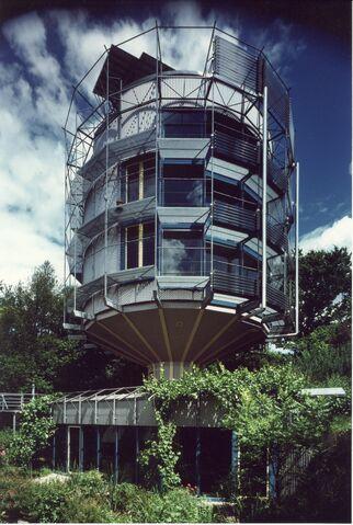 File:Heliotrop Braun groß.jpg
