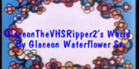 GlaceonTheVHSRipper2's World