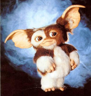 File:Gizmo (in blue flame-like background).png