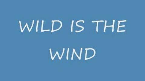 """""""Wild is the Wind"""" - The Second Band"""
