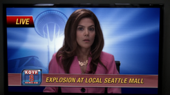 10x24MorningAnchorDiane