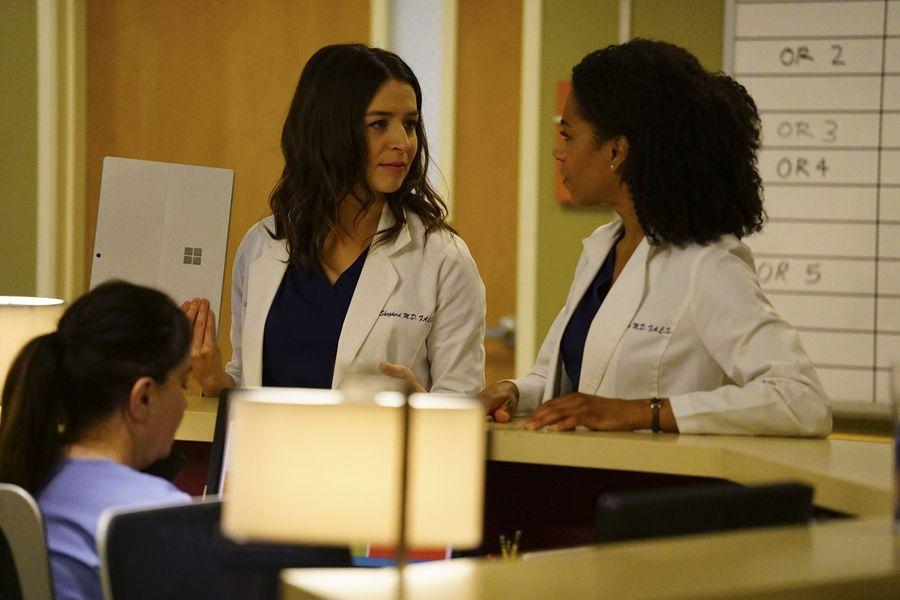 Grey's Anatomy Anatomía Grey 13x22