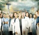 Temporada 10 (Grey's Anatomy)