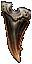 Fang of the Bonehunter Icon