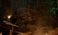 301-Plane wreckage